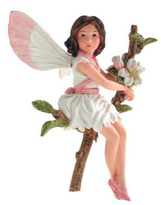 Wild Cherry Blossom with Flower Fairy 86904 (boxed) (RET'D in)
