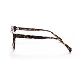AM Eyewear Bohr