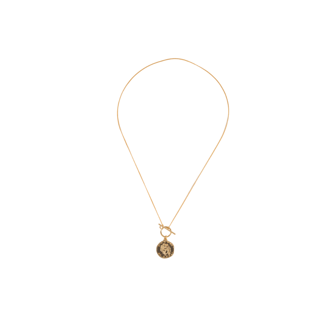 Front Toggle Gold Coin Necklace