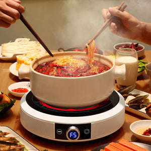 Portable Infrared Cooker (any pot) FCS 1525
