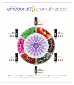 Emotional Aromatherapy Touch Kit    112PV