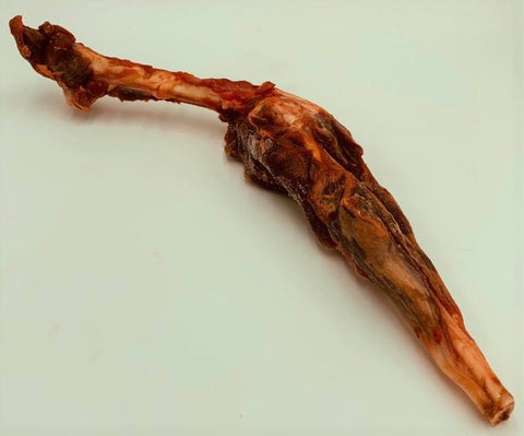 Wallaby Leg Bone
