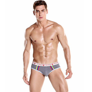 Color Stripes Detail Men's Sexy Briefs