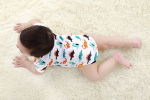 Cartoon Dinosaur Long-sleeved Onesies for Baby