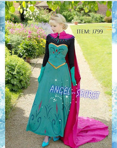 Girls' Anna Fancy Dress Costume