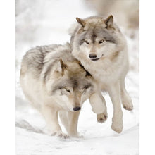 Wolf Couple Diy Digital Canvas Oil Painting By Numbers Pictures Coloring By Numbers Modern Acrylic Paint By Number Kits