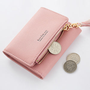 The Woman Holds The Purse In Purse Fashion Nice Wallet For Women