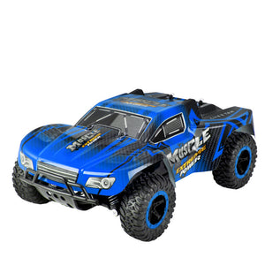 1/16 RC Car 2WD 2.4GHz High Speed Rock Crawlers Climbing Remote Control Model Off-Road Car Toy