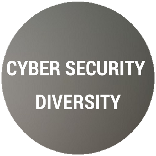 Cyber Security Diversity