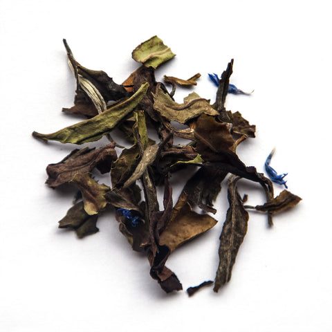Centaur's Gift White tea with cornflower