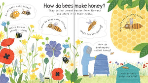 Lift-the-flap first questions and answers Why do we need Bees?