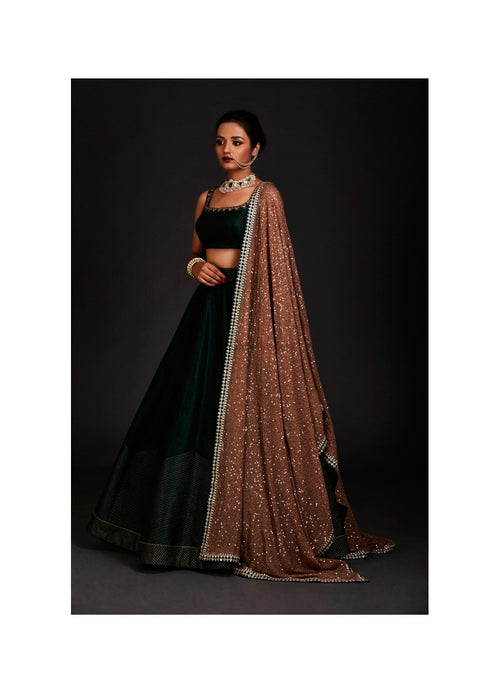 Client's Diary Delight Green Sangeet Party Lehenga Skirt Top SFIN032 - Siya Fashions