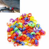 100pcs Chicken Hen Pigeon Leg Poultry Dove Bird Chicks Duck Parrot Clip Rings Band Foot Ring Pigeon Supplies Bird Appliances