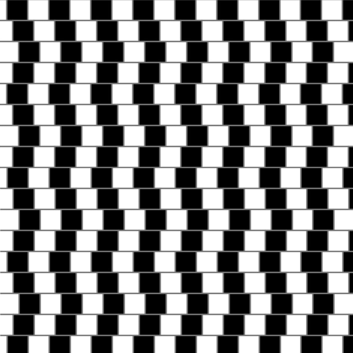 Apparent Motion line illusion black and white stripes waves