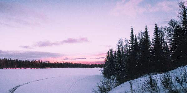 Pink sky snowed over forest lake
