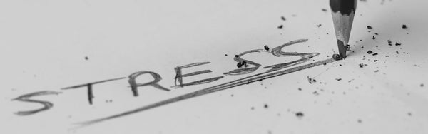 The word stress written in pencil