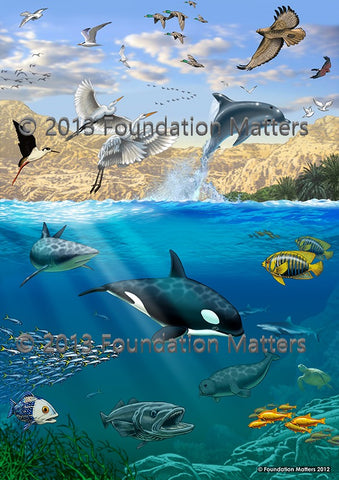 Foundations Matter Pictures (Large Laminated Print Set)