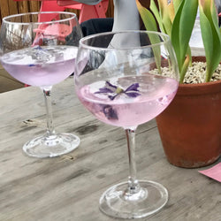 Old Curiosity Lavender & Echinacea Colour Changing Gin