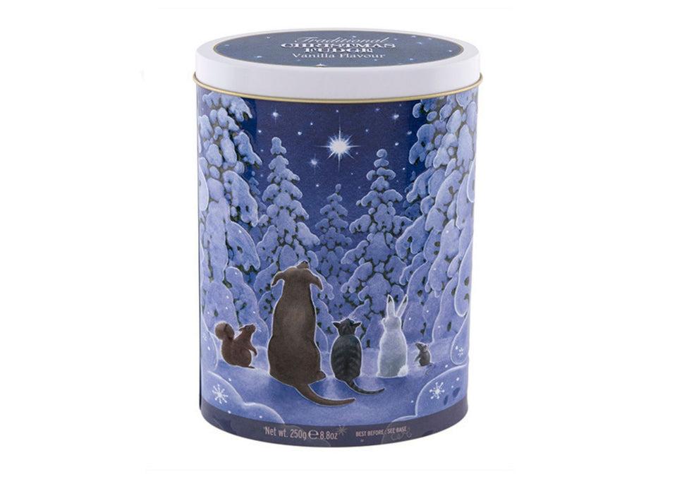 Christmas Star Gazing Tin of Vanilla Fudge xx