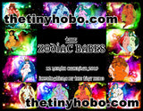 LIMITED EDITION 2019 Full Color Zodiac Babe Calendar by The Tiny Hobo **Pre-order! Shipping in time for Christmas!!**