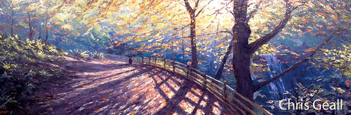Autumn light, Falling Foss
