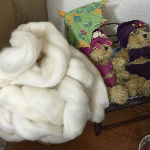Polwarth Wool Top, Natural White, 22 Micron ~ Natural Spinning Fiber / 4 oz