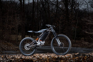 Sur-Ron setting the benchmark for lightweight Dual sport bikes.
