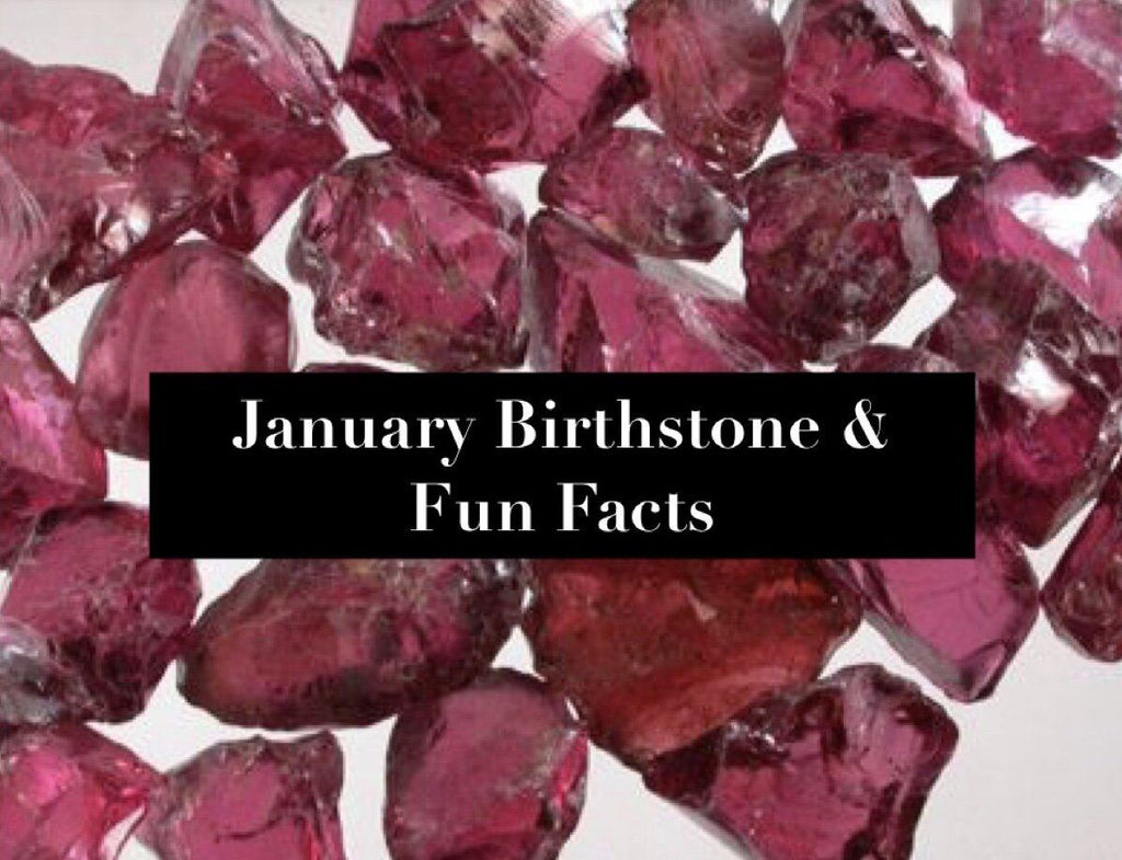 January Birthstone and Fun Facts