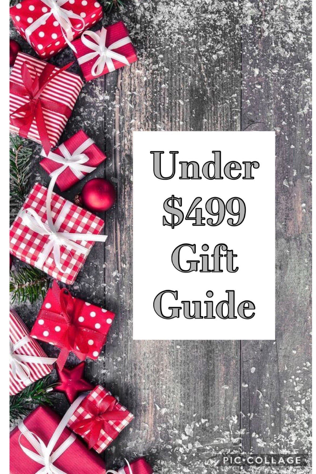Under $499 Gift Guide