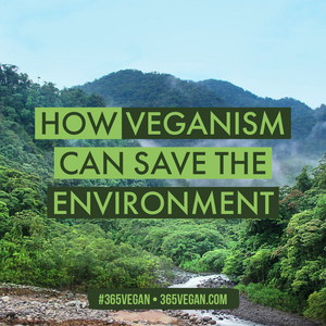How veganism can save our environment