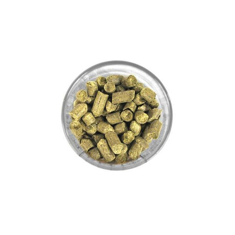 Challenger (UK) Hops - 1 oz Pellets