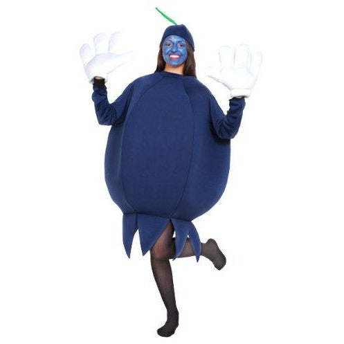 Fruit (Blueberry) Adult Costume Size Standard