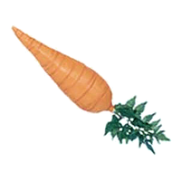 Easter Bunny Carrot