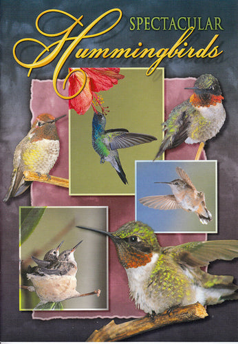 Hummingbirds - 7x10 Guide Book