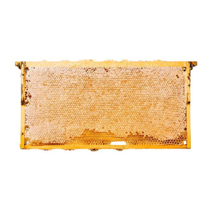 Comb Honey with Wood Frame
