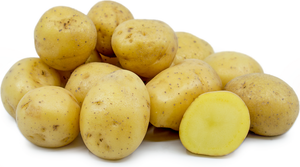 "Potatoes ""Yellow Fleshed - Canada no. 1 ""   4.54kg/bag  **** deliveries : GTA only ****"