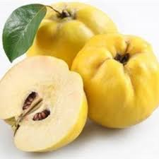 Fresh Premium Quince (available only for brief period every year)