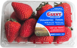 "Strawberry ""California Giant  "" fresh - 454g/package   **** deliveries : GTA only ****"