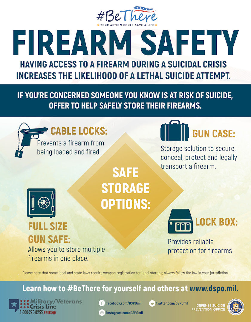 Firearm Storage Poster - Large