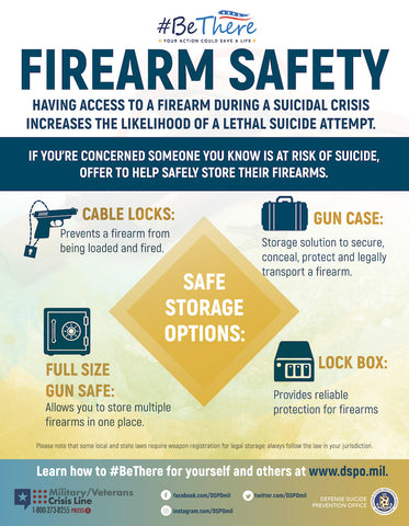 Firearm Storage Poster - Small