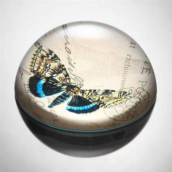 SPI Home Decor Blue and Yellow Butterfly Paperweight