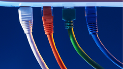 CAT 5/5E & CAT 6: What are the differences & which is right for you?