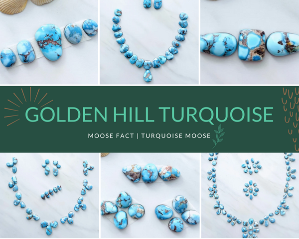 Moose Fact: Getting To Know Desert Lavender/Golden Hill Turquoise