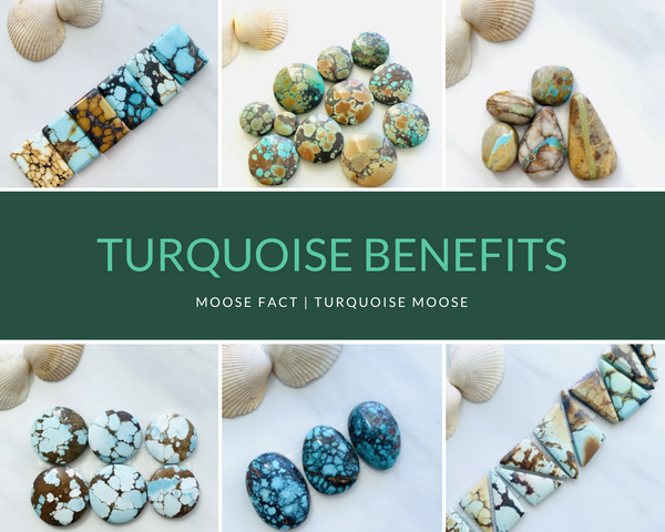 Moose Fact: Benefits of Carrying Turquoise