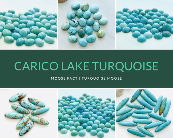 Moose Fact: Getting To Know Carico Lake Turquoise