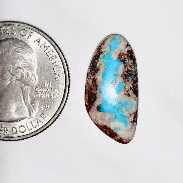 L21 x W10 x H4 mm Sky Blue Freeform Bisbee Background