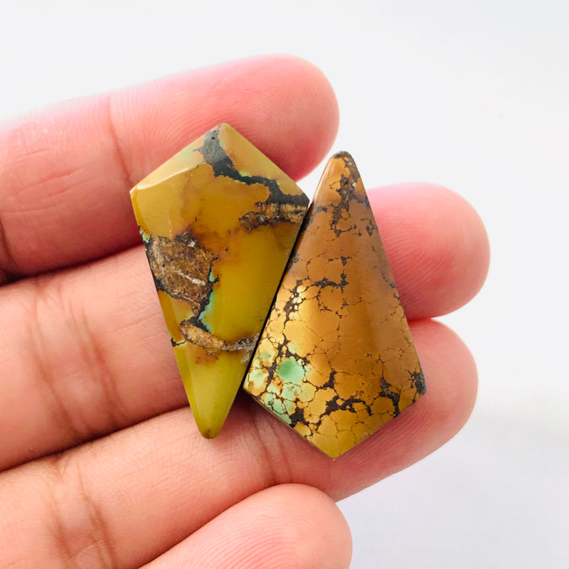 Medium Shield Treasure Mountain Turquoise, Set of 2