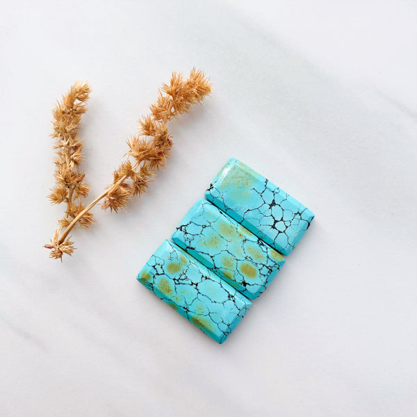 Medium Sea Green Bar Giraffe, Set of 3 Background