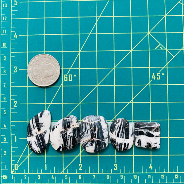 Mixed Black White Buffalo, Set of 5 Dimensions