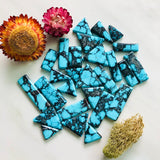 High Grade Yungai Turquoise Spiderweb Lot All Natural